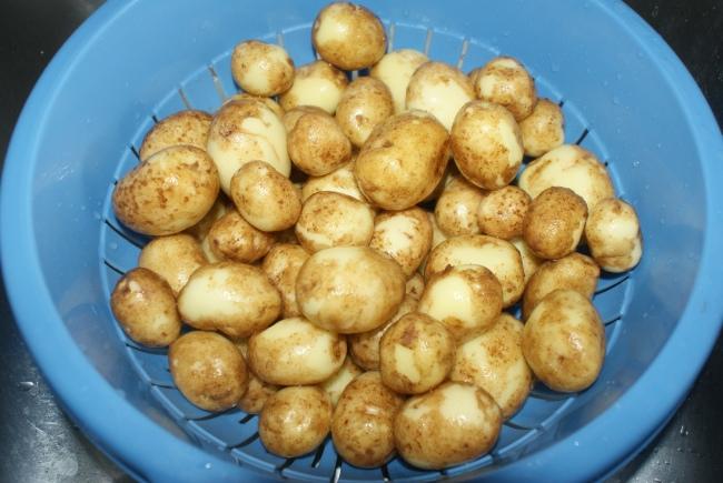 Tvättad nypotatis. Washed new potatoes. Pestyt uudet perunat.