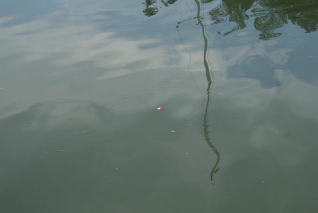 Metar. Fishing. Onkimista.