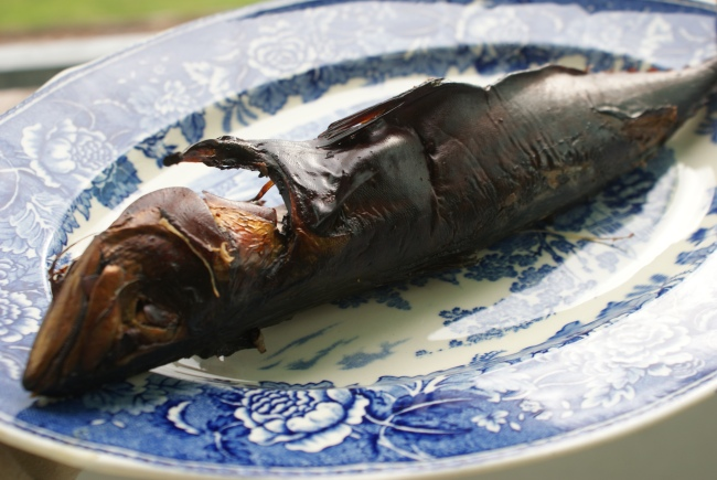 Rökt makrill, smoked mackarel, savustettua makrillia