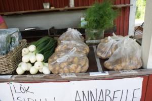 Potatis, lök och dill till salu i Kimito. Potatoes, onions and dill for sale in Kemiö. Perunaa, sipuleita ja tilliä myynnissä Kemiössä.