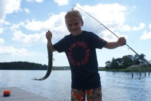Anton är en fiskekung med en gädda. Anton is the fishing king with a Northern pike. Anton kalakuningas hauellaan.
