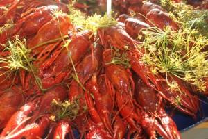 Kräftor, crayfish, ravut