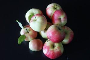 Äpplen, apples, omenoita