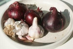 Rödlök, red onions, punasipulit