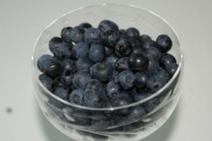 Blåbär, blueberries, mustikat