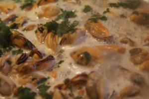 Musslor, mussels, simpukat