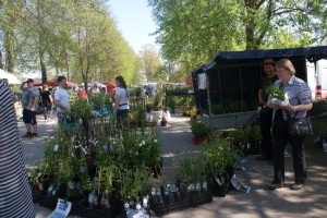 Blomstermarknaden, flower market, kukkamarkkinat