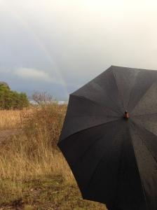 Regnbåg, rainbow, sateenkaari