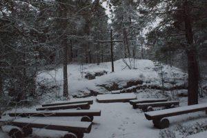 Skogskyrka, forest church, metsäkirkko